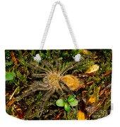 Chilean Tarantula Weekender Tote Bag