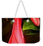 Chile's National Flower Copihue At Auto Museum In Moncopulli-chile  Weekender Tote Bag