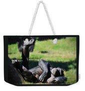 Chimp Sunbathing Weekender Tote Bag