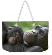 Chimpanzee Mother And Infant Weekender Tote Bag