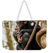Chimpanzee, Nc Zoo Weekender Tote Bag