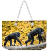 Chimpanzee Pair IIi Weekender Tote Bag