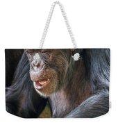 Chimpanzee Sitting Weekender Tote Bag