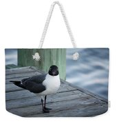 Chincoteague Island - Great Black-headed Gull Weekender Tote Bag