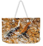 Chinook In Cottage Lake Creek Weekender Tote Bag