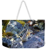 Chipmunk On The Rocks Weekender Tote Bag