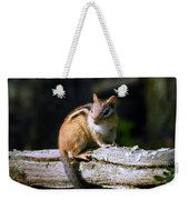 Chipmunk Portrait Weekender Tote Bag