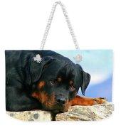 Chiron The Rottweiler  Weekender Tote Bag