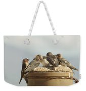 Chirping Swallows Weekender Tote Bag