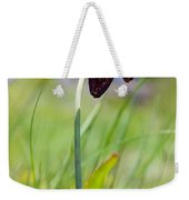 Chocolate Lily Two Weekender Tote Bag