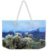 Cholla Cactus And Superstition Mountains Weekender Tote Bag