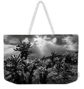 Cholla Cactus Garden Bathed In Sunlight In Black And White Weekender Tote Bag