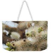 Cholla Cactus Garden Closeup Weekender Tote Bag