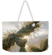 Cholla, Organ Pipe National Monument, Az  January 2015 Weekender Tote Bag