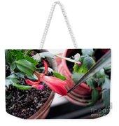 Christmas Cactus Bloom Weekender Tote Bag