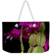 Christmas Cactus Purple Flower Blooms Weekender Tote Bag
