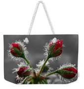 Christmas In May Weekender Tote Bag by Lori Deiter