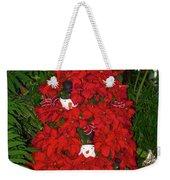 Christmas Poinsettia Display 002 Weekender Tote Bag