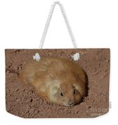 Chubby Prairie Dog Resting In A Shallow Hole Weekender Tote Bag