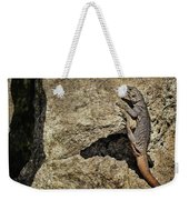 Chuckwalla - Crevice Weekender Tote Bag