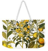 Citron And Orange, 1613 Weekender Tote Bag