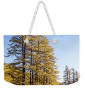 Claree Valley In Autumn - 1 - French Alps Weekender Tote Bag