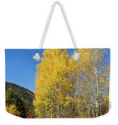 Claree Valley In Autumn - 11 - French Alps Weekender Tote Bag