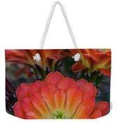 Claret Cup Cactus Flowers  Weekender Tote Bag