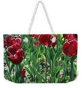 Claret Tulips  Weekender Tote Bag