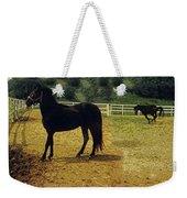 Classic Morgan Horses Weekender Tote Bag