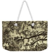 Classic Southern Beauty - Evergreen Plantation -sepia Weekender Tote Bag