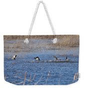 Cleared For Takeoff-ring-necked Ducks  Weekender Tote Bag