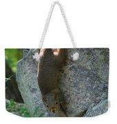 Cliff Hanger Weekender Tote Bag