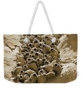 Cliff Swallow Hirundo Pyrrhonota Nests Weekender Tote Bag