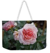 Climber Romantica Tea Rose, Digital Art Weekender Tote Bag