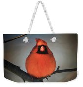 Close Encounter On A Blustery Day Weekender Tote Bag