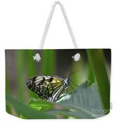 Close Up Look At A Paper Kite Butterfly On Foliage Weekender Tote Bag