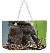 Close Up Look At A Tawny Frogmouth Sitting In A Nest Weekender Tote Bag