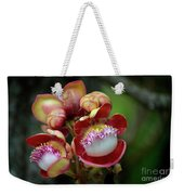 Close-up Macro Of Flower And Fruit Of Cannonball Tree Weekender Tote Bag