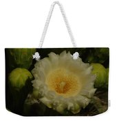Close Up Of A Cactus Bloom. Weekender Tote Bag