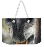 Close-up Of A Donkey's Mouth Weekender Tote Bag