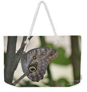 Close Up Of A Pretty Brown Morpho Butterfly  Weekender Tote Bag