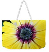 Close-up Of A Yellow African Daisy Weekender Tote Bag