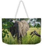 Close-up Of Elephant Behind Bush Facing Camera Weekender Tote Bag