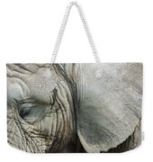 Close Up Of Eye And Ear Of An Elephant Weekender Tote Bag