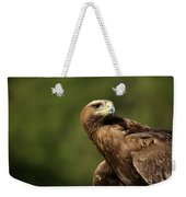 Close-up Of Golden Eagle With Head Turned Weekender Tote Bag