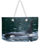 Close-up Of Killer Whale In Johnstone Weekender Tote Bag