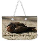 Close-up Of Mottled Pigeon On Sandy Ground Weekender Tote Bag