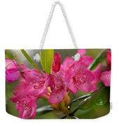 Close-up Of Pink Horatio Flowers Weekender Tote Bag