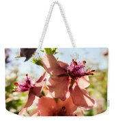 Close-up Of Pink Mullein Flowers Weekender Tote Bag